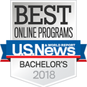 Best On Line Program